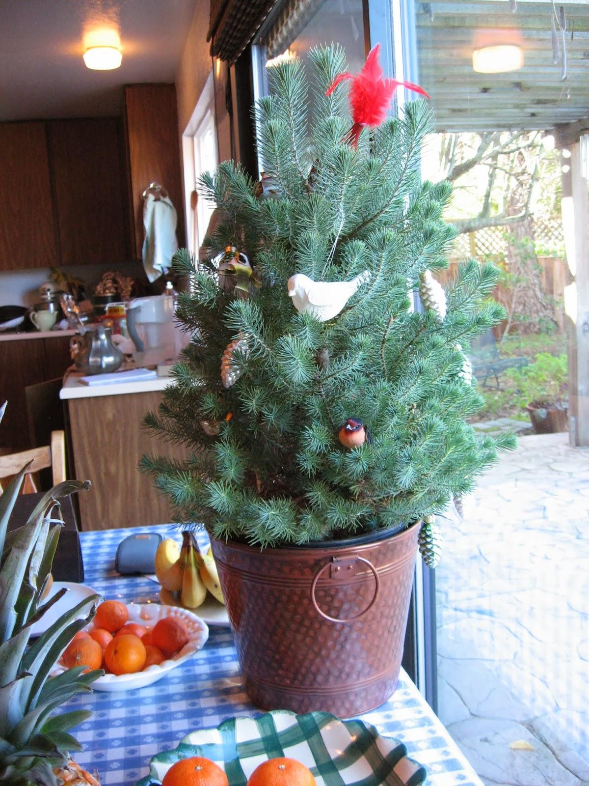 Ee Cummings Christmas Tree Part - 47: U2013e.e. Cummings