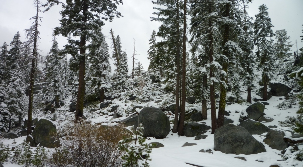 Echo summit snow trees rocks 5-6-14