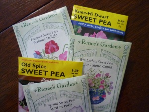 sweet pea seeds 2013