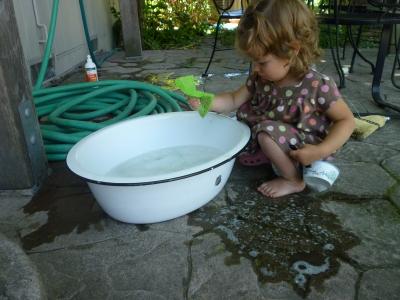 Ivy wash 6-14