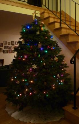 tree 14 crp