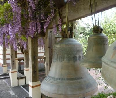 bells 2+ wisteria 4-18-15