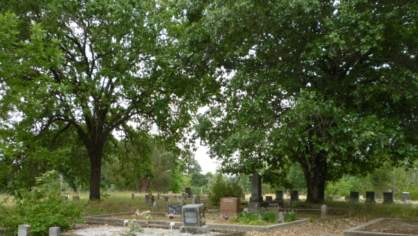 Fvl cemetery Radonitsa 15