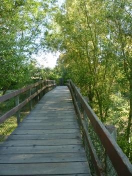 bike path bridge 5-15