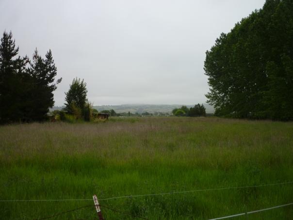 Sn Ln view overcast 5-15