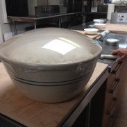 dough risen 8-4-15