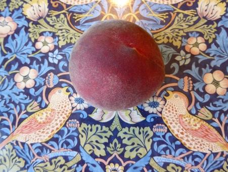 peach P1010226 peach