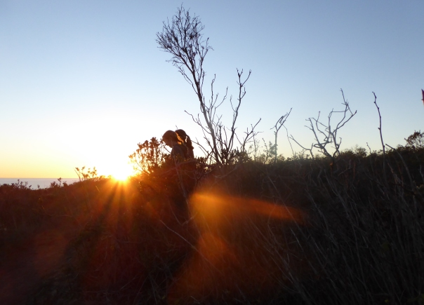 gl P1020992 M & P sunset glow