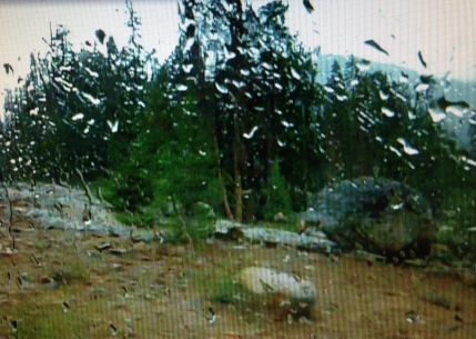 gl rain IMG_1628 movie pause