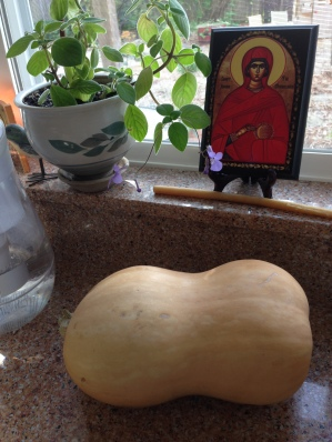 butternut squash whole 2016-04 6-pounder