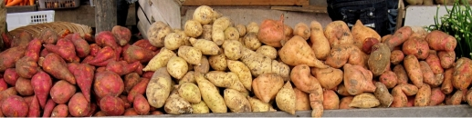 gl Sweet_potatoes,_Padangpanjang wiki