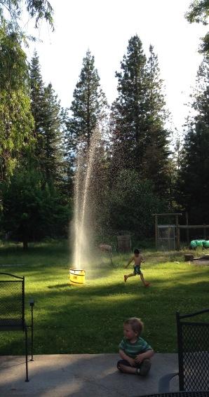 sprinkler 6-16