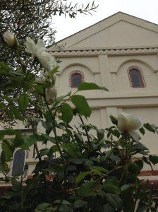 gl IMG_2993 church