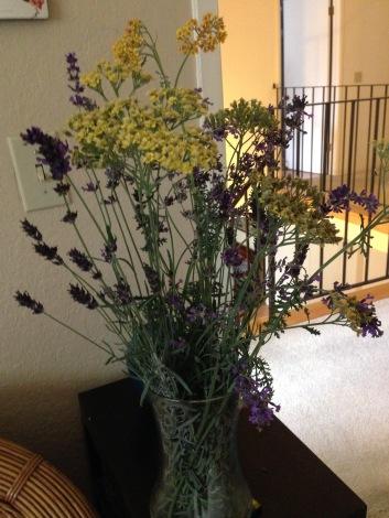 gl-yarrow-lavender-10-24-16