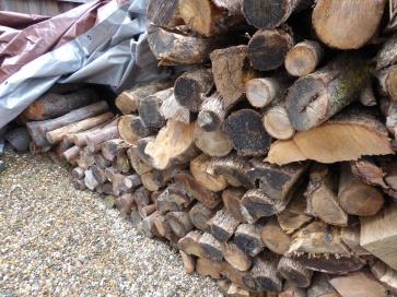 garden-p1060572-firewood